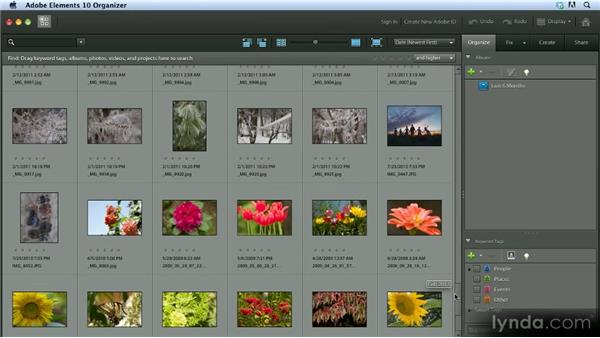 Hiding photos: Getting Started with Photoshop Elements 10