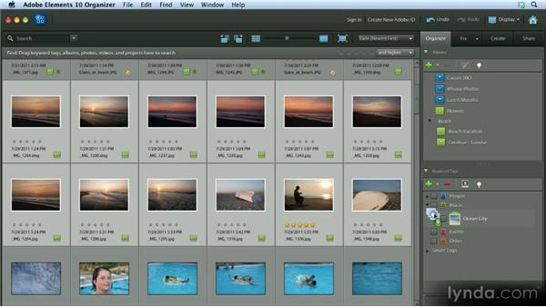 Using keyword tags: Getting Started with Photoshop Elements 10