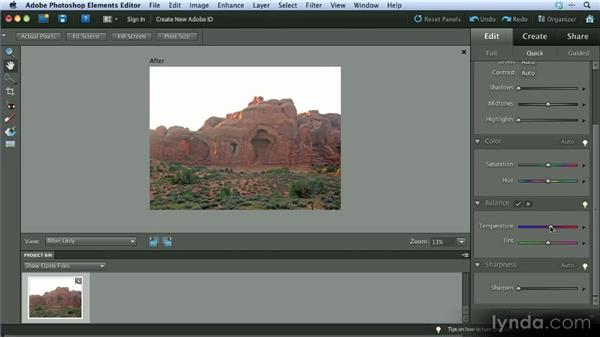 Adjustments: Getting Started with Photoshop Elements 10