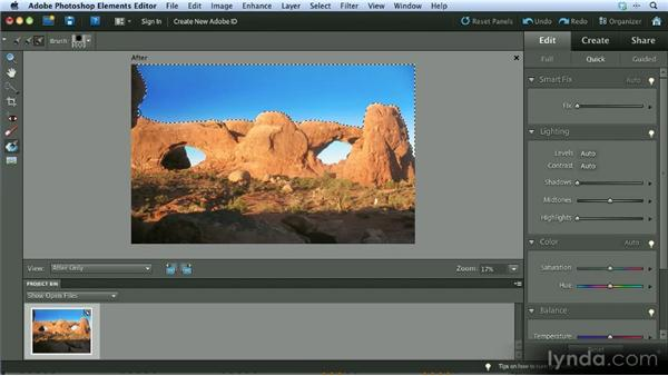 Quick Edit mode tools: Getting Started with Photoshop Elements 10