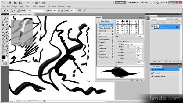 Creating an expressive bristle brush: Creating a Digital Painting with Photoshop CS5