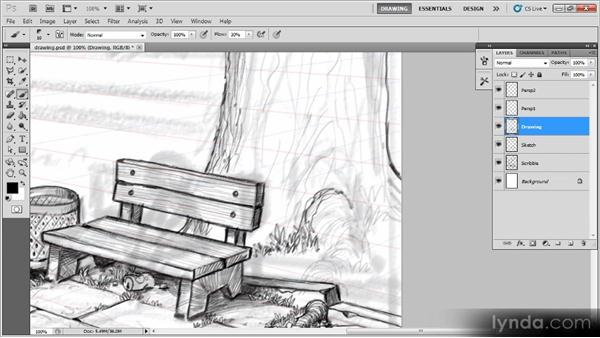 Drawing the trees: Creating a Digital Illustration with Photoshop CS5