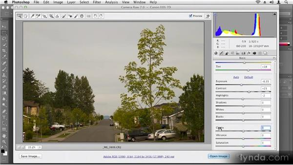 Using Camera Raw: Up and Running with Photoshop CS6