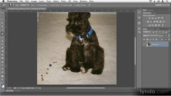 Removing small problems: Up and Running with Photoshop CS6