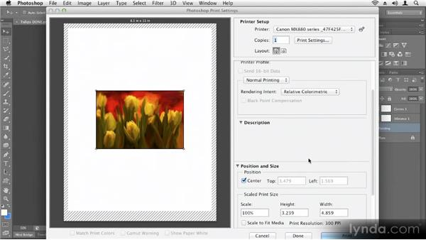 : Up and Running with Photoshop CS6