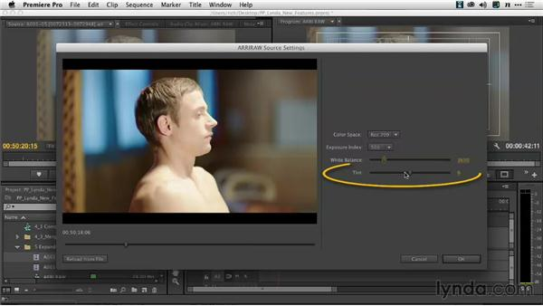 Expanded format support: Premiere Pro: Creative Cloud Updates