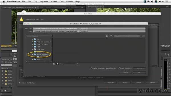 Linking to and from image sequences: Premiere Pro: Creative Cloud Updates