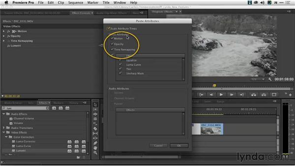 The Paste Attributes option dialog: Premiere Pro: Creative Cloud Updates