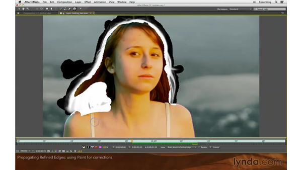 Propagating refined edges: After Effects: Creative Cloud Updates