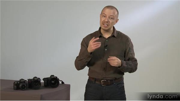 Depth-of-field preview: Photography 101 (2012)