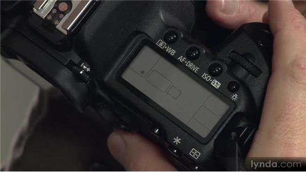 White balance options: Photography 101 (2012)