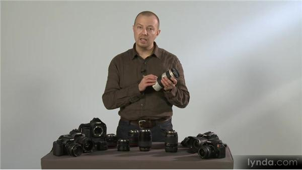 Lenses and bodies and tech, oh my!: Photography 101 (2012)