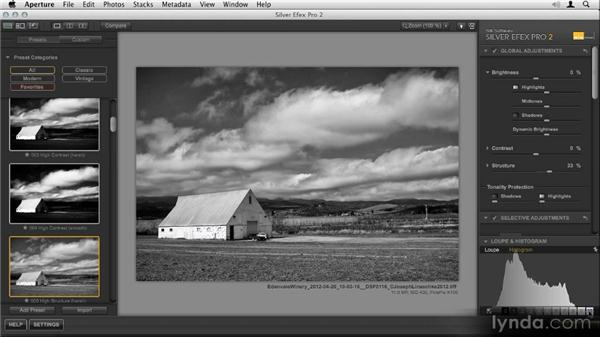 Using the zone system in Silver Efex Pro: Nik Creative Effects Workshop