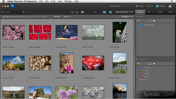 Importing images: Quick Fixes with Photoshop Elements 10