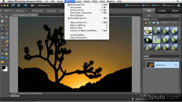 Opening images in the Editor: Quick Fixes with Photoshop Elements 10