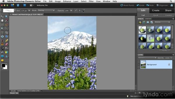 Painting with light (and dark): Quick Fixes with Photoshop Elements 10