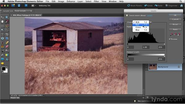 Shifting color with Levels: Quick Fixes with Photoshop Elements 10