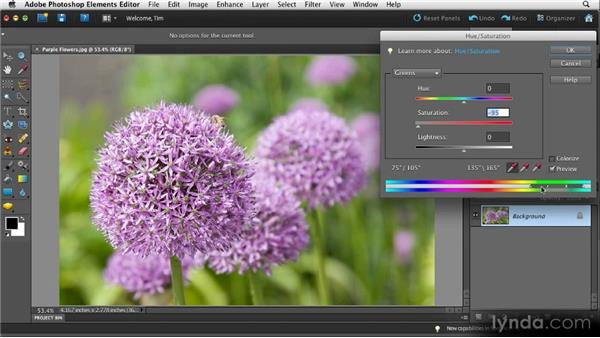 Focused color adjustment: Quick Fixes with Photoshop Elements 10
