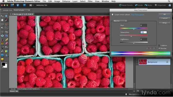 Toning down colors: Quick Fixes with Photoshop Elements 10