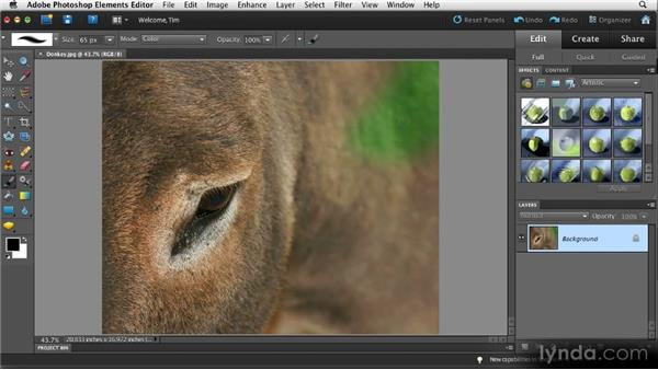 Correcting color contamination: Quick Fixes with Photoshop Elements 10