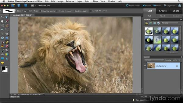 Sophisticated cleanup: Quick Fixes with Photoshop Elements 10