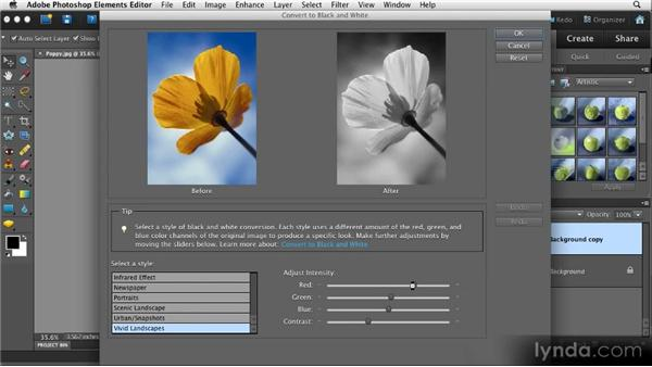 Partial color: Quick Fixes with Photoshop Elements 10