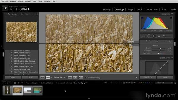 Seeing a before-and-after view: Lightroom 4 Image Optimization Workshop