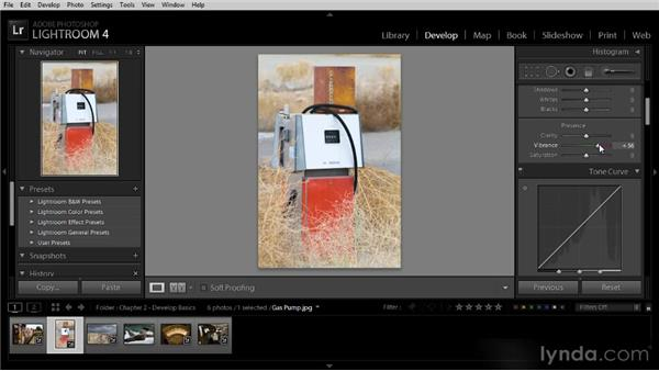 Boosting colors with Vibrance and Saturation: Lightroom 4 Image Optimization Workshop