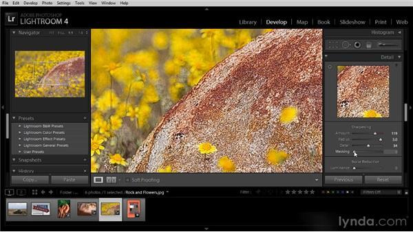 Sharpening an image: Lightroom 4 Image Optimization Workshop