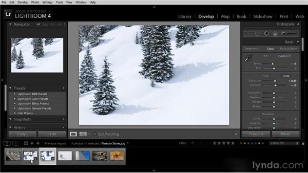 Creating virtual copies: Lightroom 4 Image Optimization Workshop