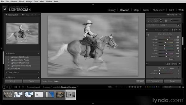 Converting color into black and white: Lightroom 4 Image Optimization Workshop
