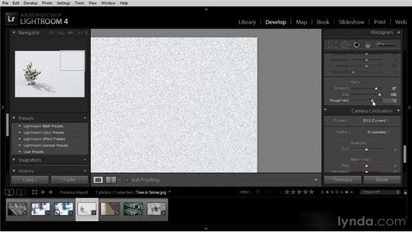 Adding a film grain effect: Lightroom 4 Image Optimization Workshop
