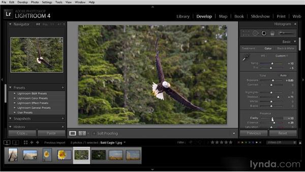 Duplicating the previous adjustment: Lightroom 4 Image Optimization Workshop