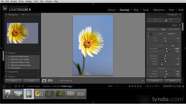 Copying and pasting Develop settings: Lightroom 4 Image Optimization Workshop