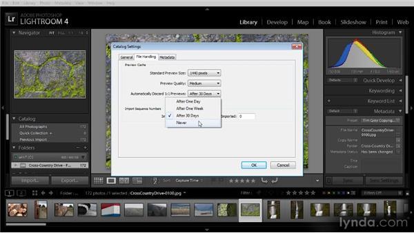 Catalog settings: Lightroom 4 Image Management Workshop