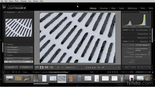 Working with the Lightroom interface: Lightroom 4 Image Management Workshop