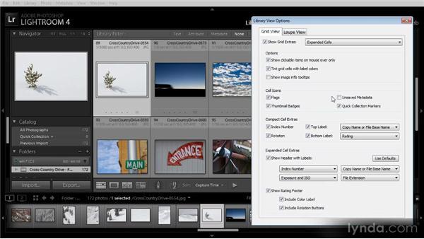 Grid view display options: Lightroom 4 Image Management Workshop