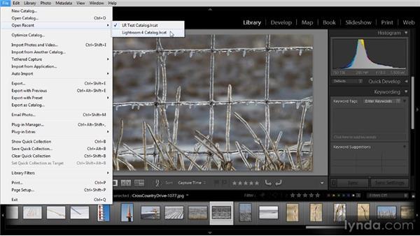 Working with multiple catalogs: Lightroom 4 Image Management Workshop