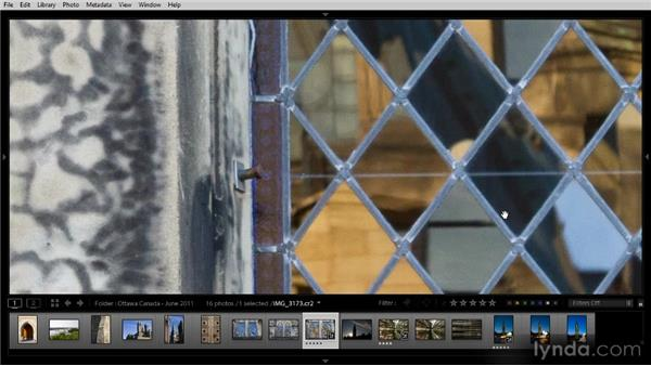 Reviewing images in detail with Loupe view: Lightroom 4 Image Management Workshop