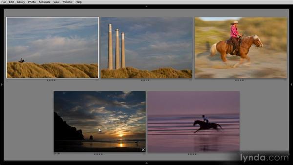 Using Survey view: Lightroom 4 Image Management Workshop