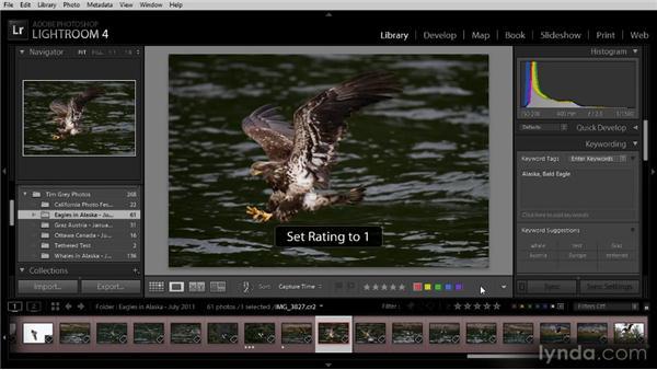 Auto-advancing during image review: Lightroom 4 Image Management Workshop