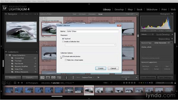 Using collections to organize photos: Lightroom 4 Image Management Workshop