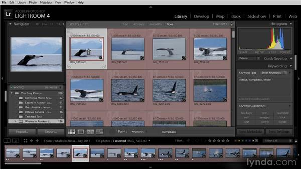 Using the Painter tool: Lightroom 4 Image Management Workshop