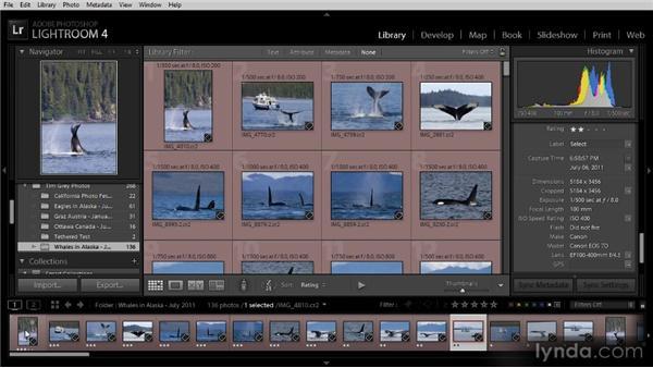 Setting image sort order: Lightroom 4 Image Management Workshop