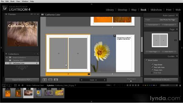 Modifying a book layout: Lightroom 4 Image Sharing Workshop