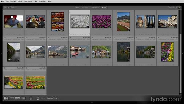 Basic image review: Getting Started with Lightroom 4