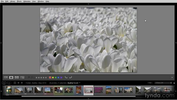 Using the auto-advance feature: Getting Started with Lightroom 4