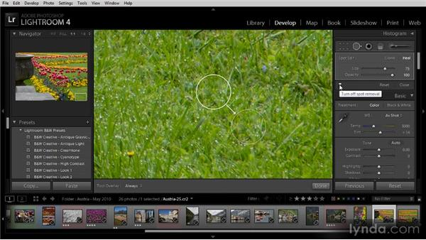 Basic image cleanup: Getting Started with Lightroom 4