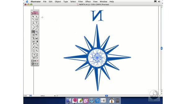 reflection: Illustrator CS Essential Training
