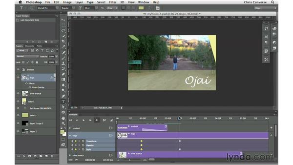 Previewing the final project: Design the Web: Video Graphics and Animation